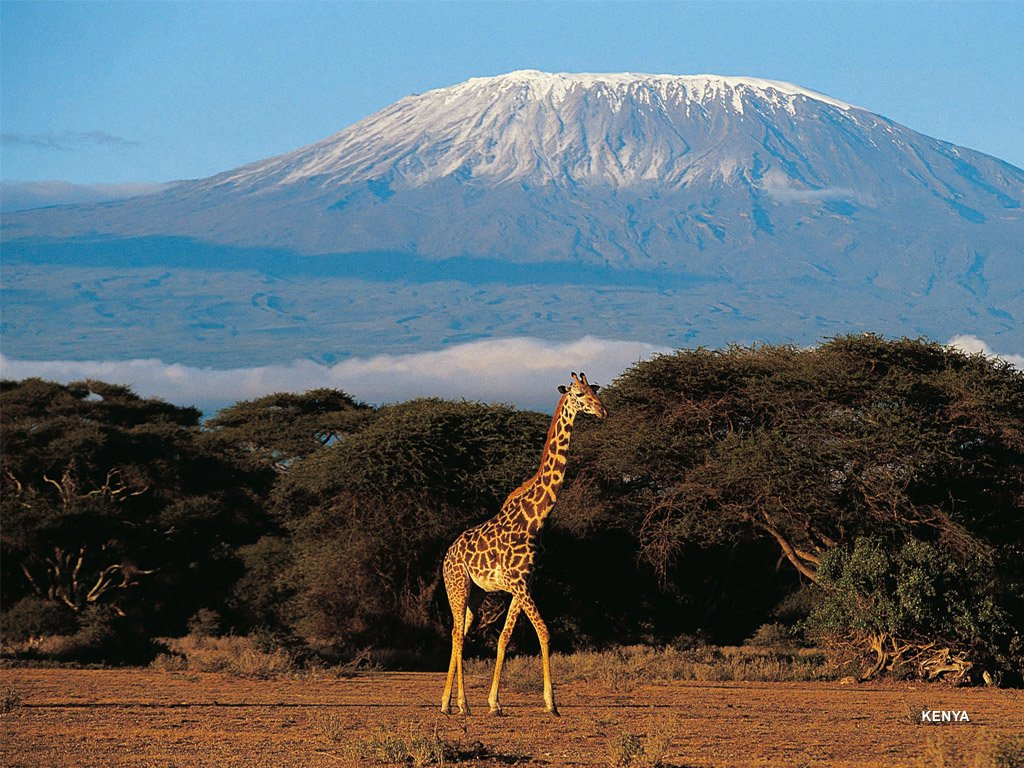 Kenya for Paysage